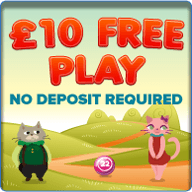 Kitty Bingo Offering Great Promotions And Winners On Launch