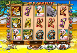 Wild Gambler Brings Africa To Your PC Slots – Get 5 Free